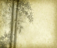 Bamboo on old grunge paper texture background Royalty Free Stock Photos