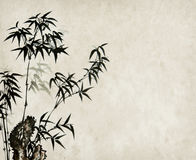 Bamboo on old grunge paper texture Stock Photos