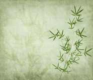 Bamboo on old grunge paper Royalty Free Stock Photography