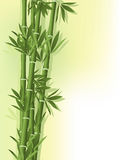 Bamboo on the old paper background. Bamboo with siluets on the old paper background Stock Image