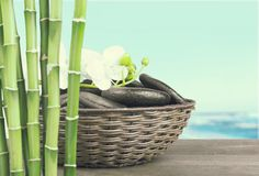 Bamboo and Orchid Royalty Free Stock Photo