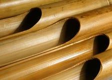 Bamboo organ Stock Images