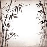 Bamboo painted on textural grunge background. Vector Royalty Free Stock Images
