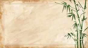 Bamboo painted on textural grunge horizontal background. Vector royalty free illustration