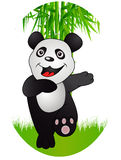 Bamboo and panda Royalty Free Stock Images
