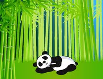 Bamboo and panda Royalty Free Stock Photography