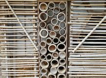 Bamboo panel Stock Images
