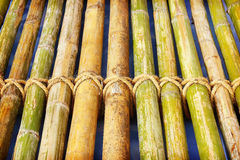 Bamboo panel with a rope tied Royalty Free Stock Image