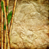 Bamboo paper. Vintage crumpled paper with bamboo  leaves Stock Photo