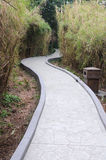 Bamboo path Royalty Free Stock Photography