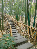 Bamboo path Stock Photo