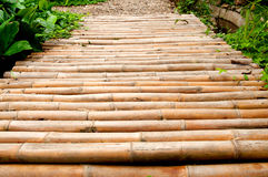 Bamboo path. In the garden Royalty Free Stock Image