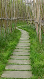 Bamboo path Royalty Free Stock Photos