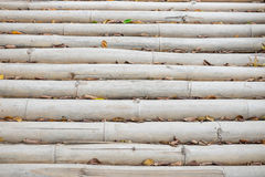 Bamboo path in the park Royalty Free Stock Photo