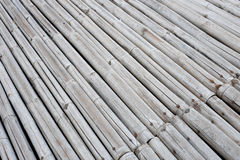 Bamboo path in the park Stock Image