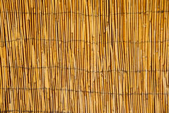 Bamboo Pattern. Close-up of a bamboo fence stock photos