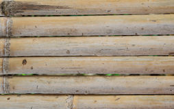 Bamboo pattern. Closeup of Bamboo pattern background Royalty Free Stock Photography