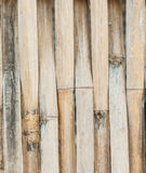 Bamboo of pattern design Stock Images