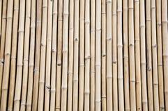 Bamboo pattern Stock Photography