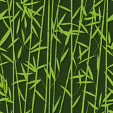 Bamboo pattern seamless Royalty Free Stock Images