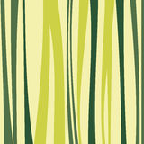 Bamboo pattern Royalty Free Stock Images