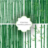 Bamboo patterns Stock Image