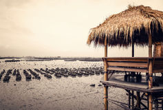 Bamboo pavilion Royalty Free Stock Images