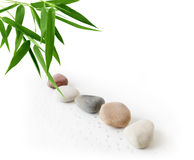 Bamboo and Pebbles Stock Image