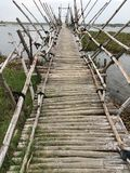Bamboo pedestrian and moto bridge. On a cloudy day in tropics stock image