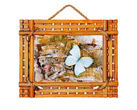 Bamboo photo frame with abstract composition of butterflies, bir Royalty Free Stock Photos