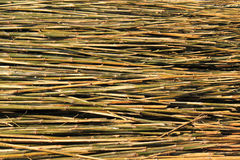 Bamboo pile Stock Photos