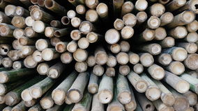 Bamboo pile Stock Images