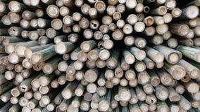 Bamboo pile Stock Photo