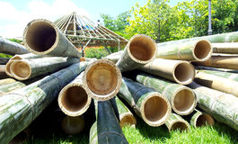 Bamboo pile Royalty Free Stock Photo
