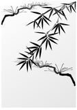 Bamboo and pine stock illustration