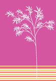 Bamboo. Pink colour theme series bamboo Royalty Free Stock Image