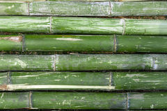 Bamboo pipe Royalty Free Stock Images