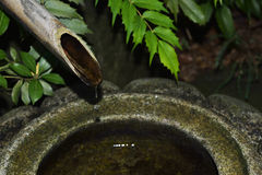 Bamboo pipe with water drops at old-fashioned Japanese garden. Stock Images