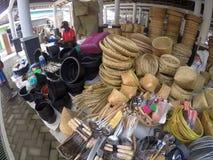 Bamboo plainting Stock Photography