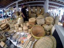 Bamboo plainting Stock Photos