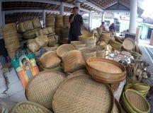 Bamboo plainting Royalty Free Stock Image