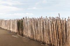 Bamboo Protect Sandbank. Fence Of Bamboo Protect Sandbank From Sea Wave Stock Photo