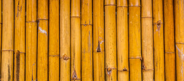 Bamboo. Quality natural bamboo fence background Royalty Free Stock Image
