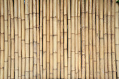 Bamboo quiver. Stock Photo