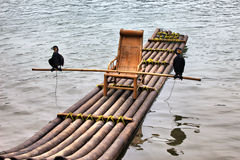 Bamboo raft and cormorant Royalty Free Stock Images