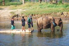 Bamboo rafting Stock Photos