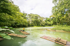 Bamboo Rafting on the Martha Brae River in Jamaica. Stock Photos