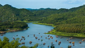 Bamboo rafting stock video footage