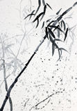 Bamboo in the rain Royalty Free Stock Photography