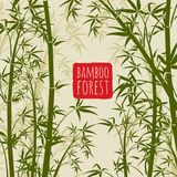 Bamboo rain forest vector wallpaper in japanese and chinese art style. Bamboo chinese pattern nature, japanese forest illustration Royalty Free Stock Photo
